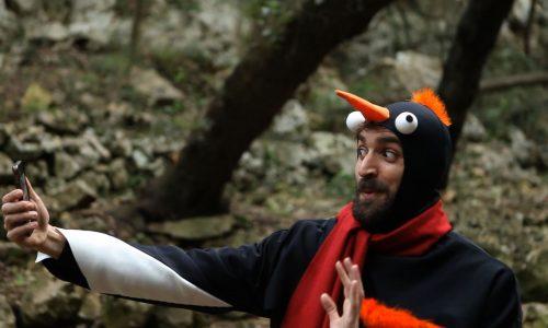 todo-saldra-bien-pinguino-2